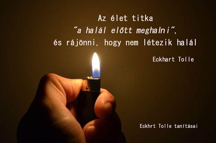 Eckhart Tolle idézete a halálról. A kép forrása: Eckhart Tolle tanításai