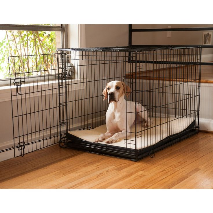 Have to have it. Snoozer Pet Dog Crate Pads 2 in. Foam - $15.99 @hayneedle