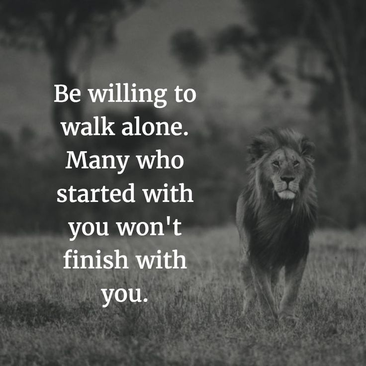 Alone Quotes Amazing 8 Best Like A Lion Images On Pinterest  Motivational Life Quotes