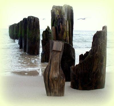 rzeźbiarz warmiński: dąb kopalny