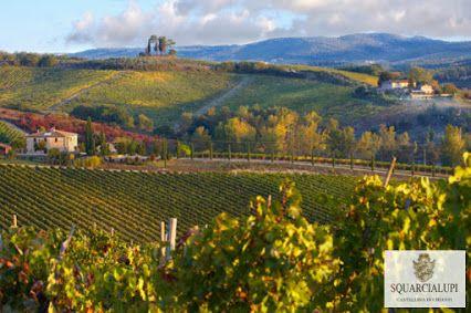 Un buongiorno ai nostri follower con una bellissima veduta del Chianti  Panorama mozzafiato dal nostro agriturismo La Ferrozzola. Guardalo qui: http://www.laferrozzola.com/  #chianti #toscana #tuscany #Italia #Italy