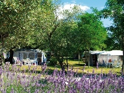Camping Le Petit Bois***