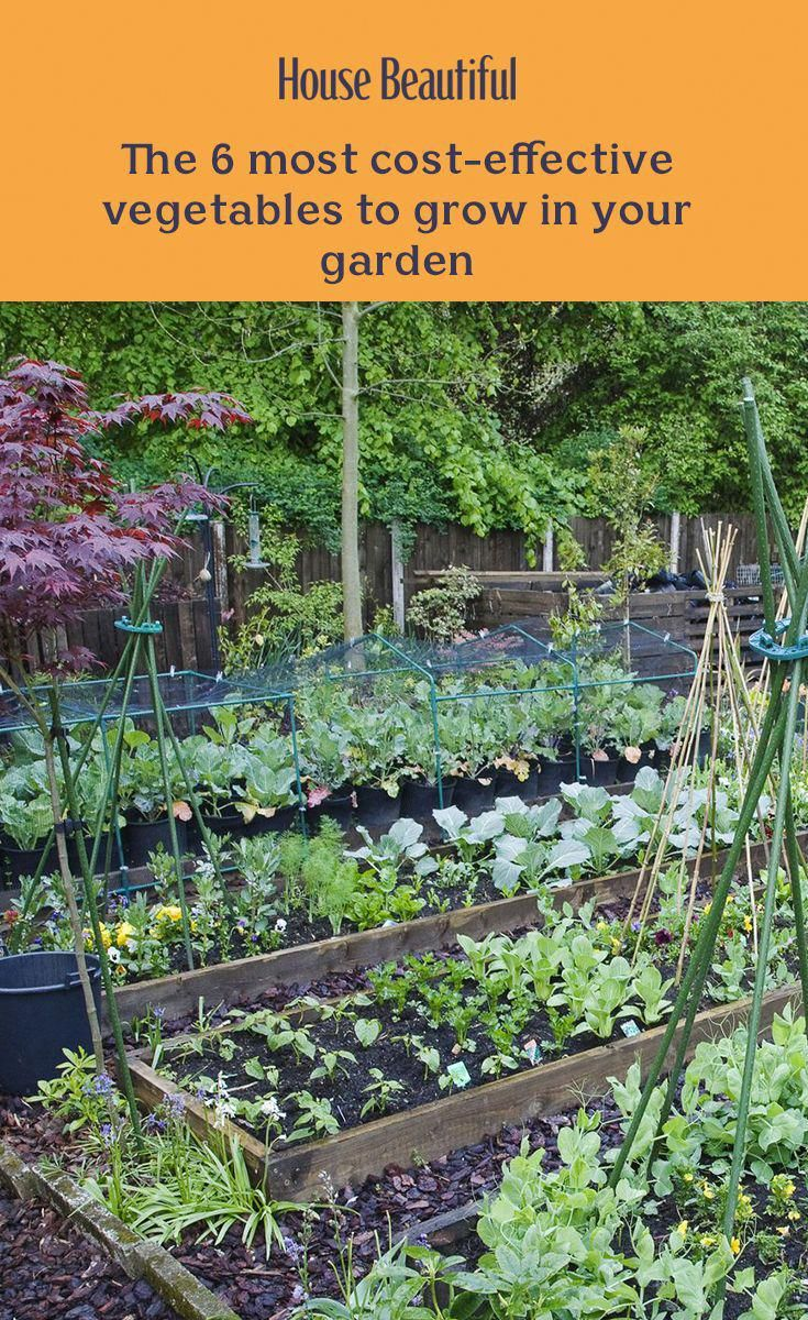 f2bfd6307e217fe925c93ca125be8a68 - How Can Gardening Help The Environment