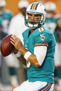 Miami Dolphins quarterback Matt Moore