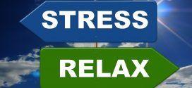 Cómo Combatir el Estrés de la Forma Más Natural Posible.
