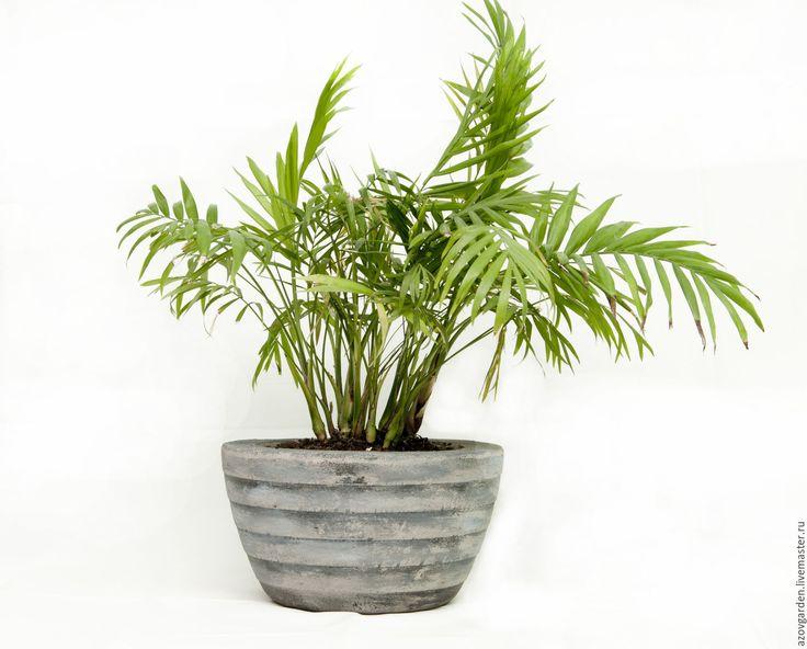 Купить Горшок из бетона для дома и сада - серый, рыжий, полосатый, состаренный, горшок для цветов, из бетона