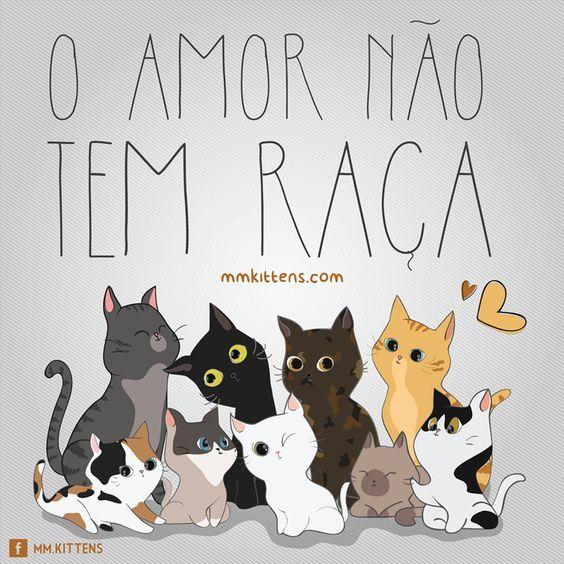 O AMOR INCLUI A TODOS! <3 <3 <3 #petmeupet #amoanimais #cachorro #gato #maedepet #filhode4patas