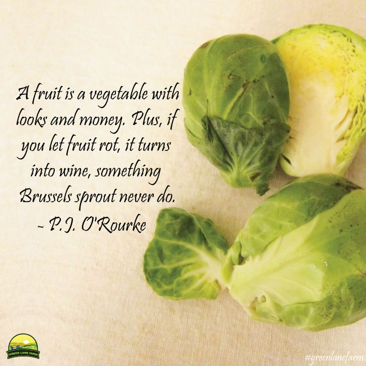 """A fruit is a vegetable with looks and money. Plus, if you let fruit rot, it turns into wine, something Brussels sprouts never do."" ~ P.J. O'Rourke #greenlanefarm #quotes #money"