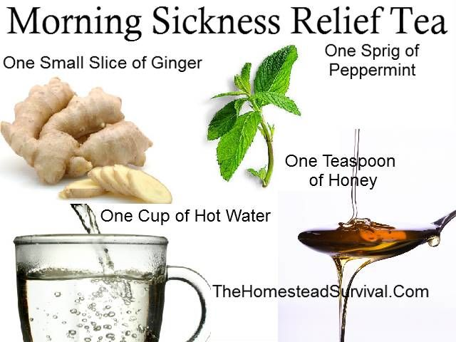 Morning Sickness Relief Tea Recipe » The Homestead Survival