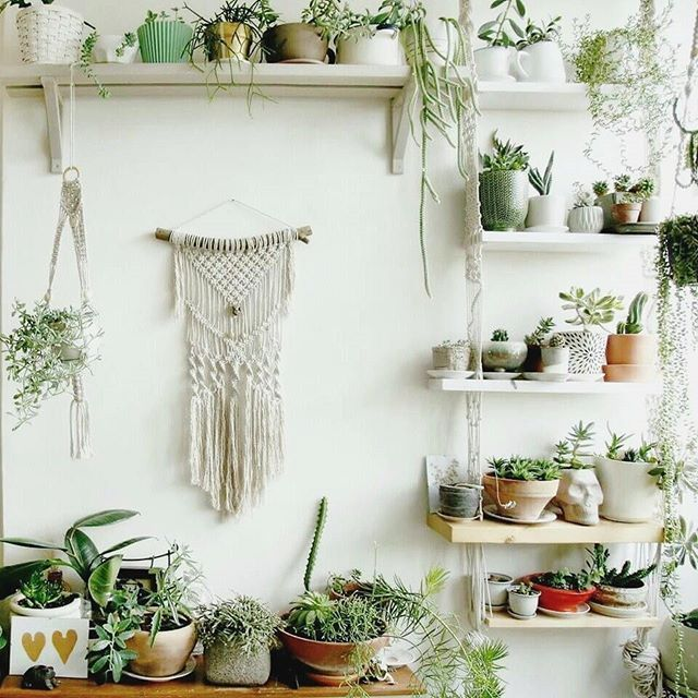 Neutral hues a macramé wall hanging and creative plant pots definitely a winning combination