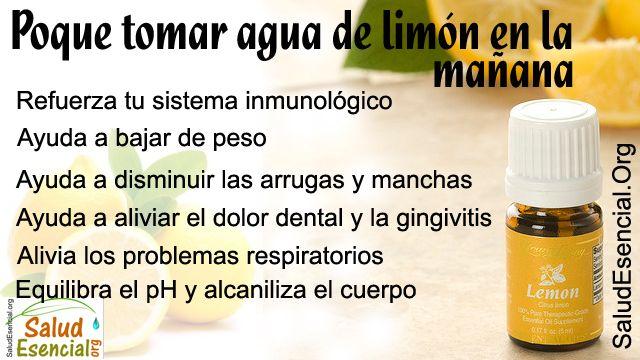 Los limones son refrescantes y versátiles, con una multitud de beneficios prácticos. Lo más increíble es que a pesar de que son decididamente ácidos y amargos de sabor, los limones tienen un efecto alcalinizante sobre el cuerpo. Tomar un jugo de limón en la mañana es un hábito saludable y un componente destacado de muchas limpiezas y dietas de desintoxicación. Ritual de la mañana Su limpieza jugo de limón puede comenzar a primera hora de la mañana con el jugo de limón en agua tibia para…