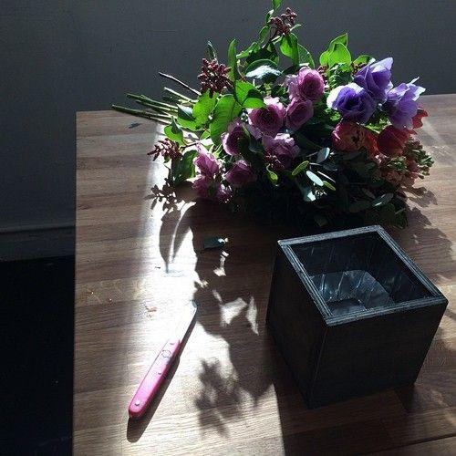 Gardenia Organic flower class.jpg