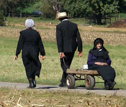 society culture an amish An amish woman's role in the family  in amish culture, and on some levels are even afforded types of equality and freedoms that women outside of amish society.