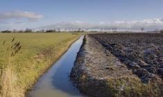 Duurzame keuzes bij de toepassing van het Europees landbouwbeleid in Nederland Rli - oktober 2013
