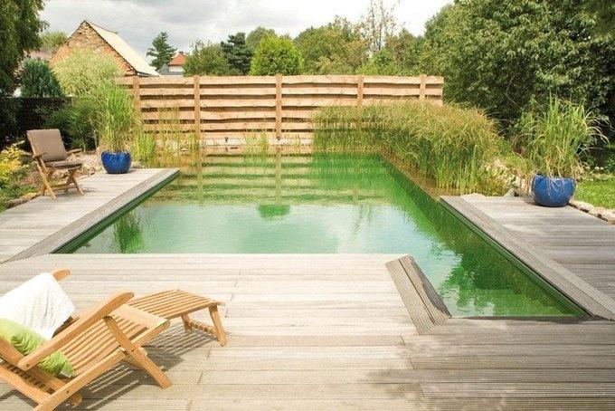 Biopool bei tageslicht dammar ponds pinterest for Garden pool doomsday preppers