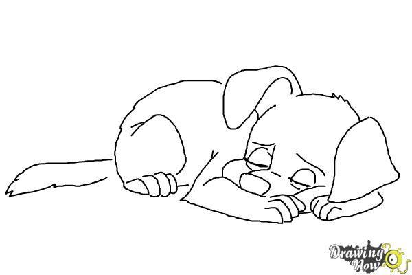 Картинках светлой, спящая собака картинки нарисованные