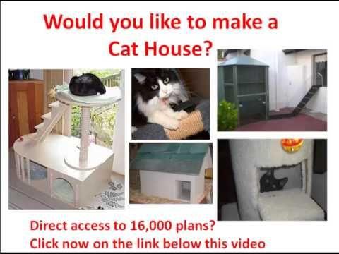 cat houses for outside for winter | hqdefault.jpg tree house