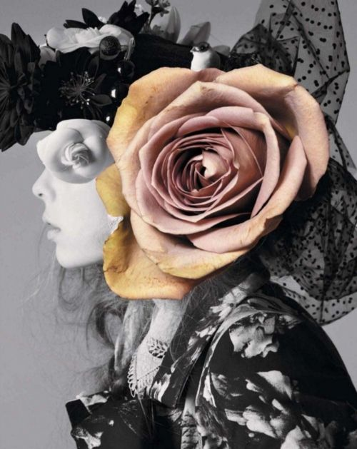 collage: Ble Mel, Jalouse February, Fashion, Art, Edie Campbell, Collage, February 2012, Photography, Flower