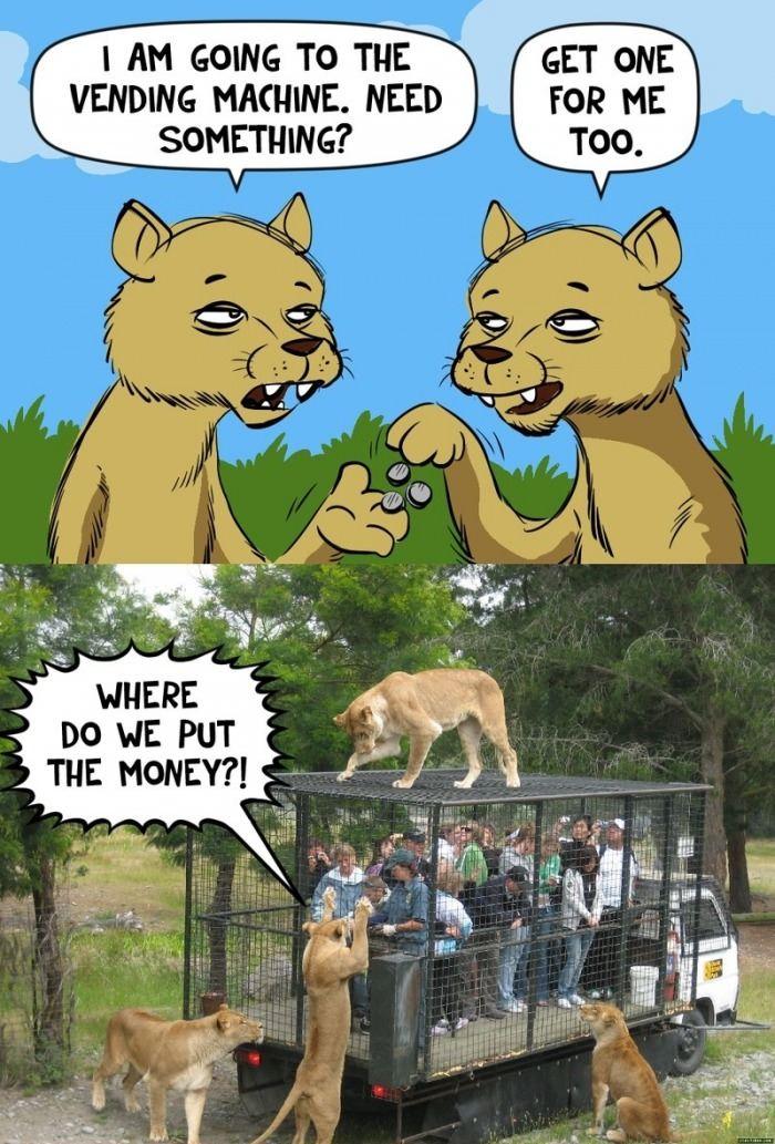 Where do we put the money?