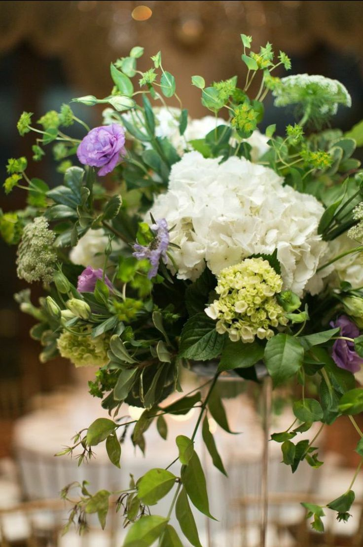 arrangements of white hydrangea, mini green hydrangea, bupleurum, lavender scabiosa, white stock, green queen anne's lace, lavender lisianthus, variegated pittosporum, lemon leaf & jasmine vine on tall clear glass pilsner vases