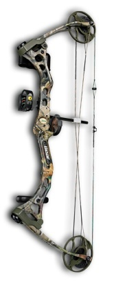 my Bear Compound Bow