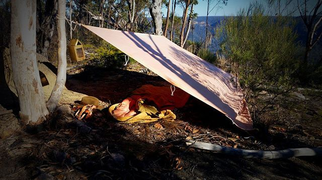 Japara tarp from @Terra_Rosa_Gear pitched as a windbreak during a swag bushwalk…