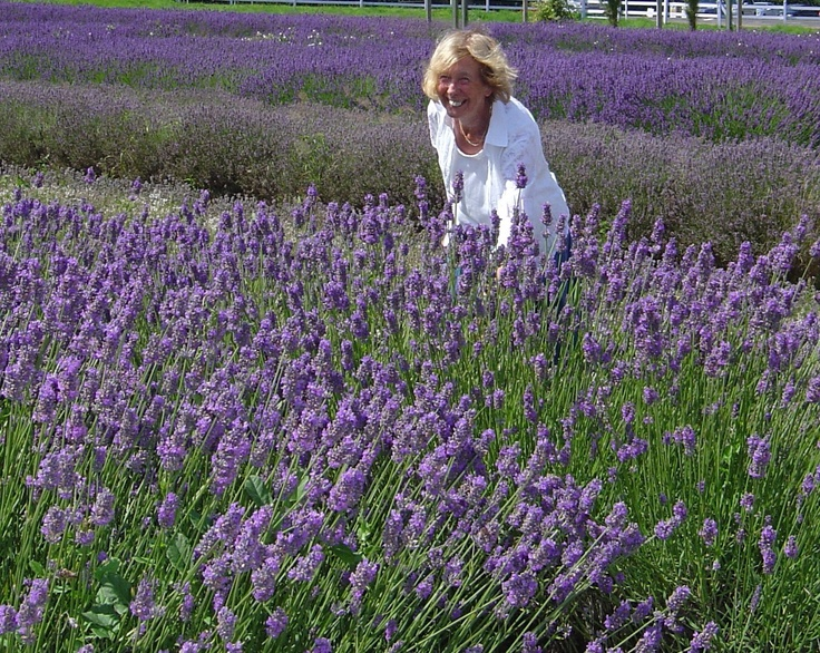 My mother at Norfolk Lavender Farm in 2007