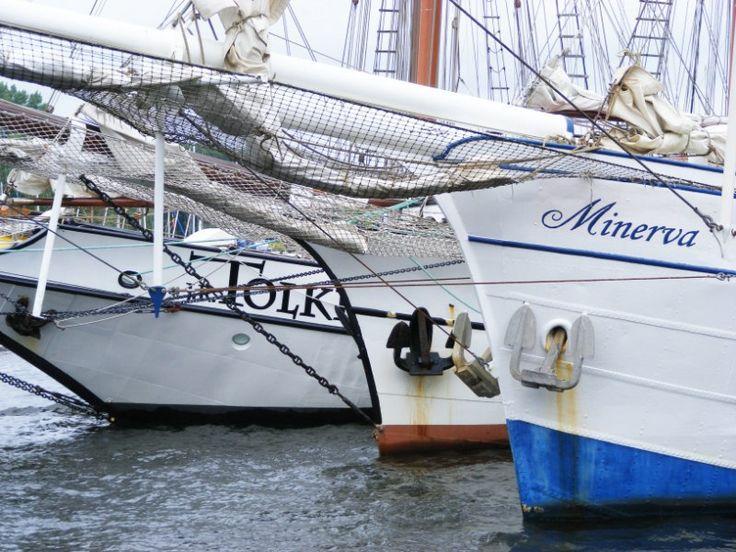 Impressionen von der Hanse Sail   Hanse Sail 2010 (c) FRank Koebsch (9)