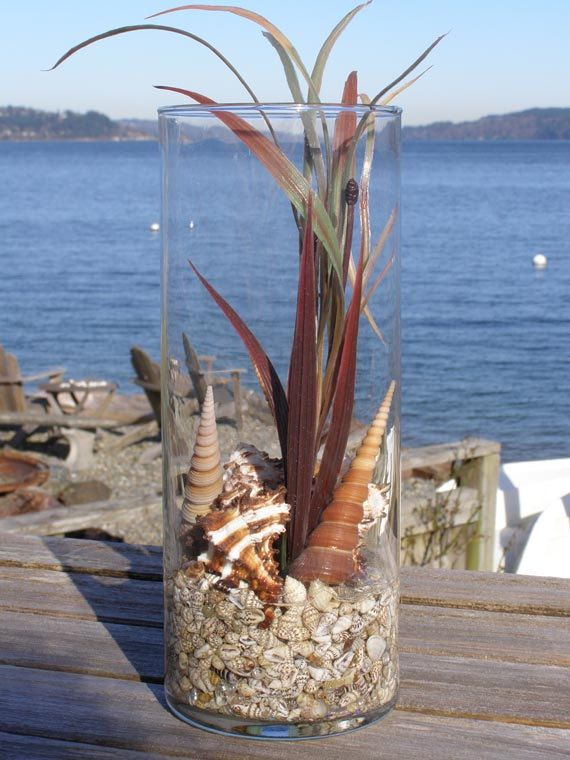 BEACH DECOR, SEASHELLS arrangement, nautical, permanent in glass -- Medium Brown, faux seagrass, home decor. $28.50, via Etsy.
