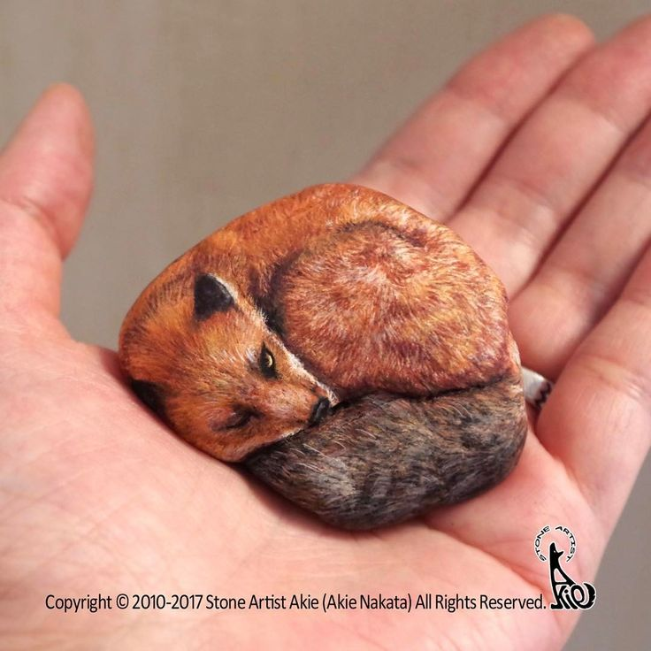 "790 mentions J'aime, 50 commentaires - Stone Artist Akie (@akie_2525) sur Instagram : ""New piece!! Red fox painted on natural shape stone. the size: 55x45x25mm アカギツネ、完成しました。 サイズ:…"""