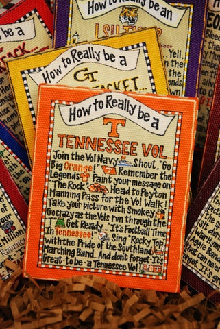 a Tennessee VolGlories Haus, Football Fanatic, Tops Tennessee, Southern Girls, Rocky Tops, Big Orange, True Southern, Tennessee Football, Haus Glories