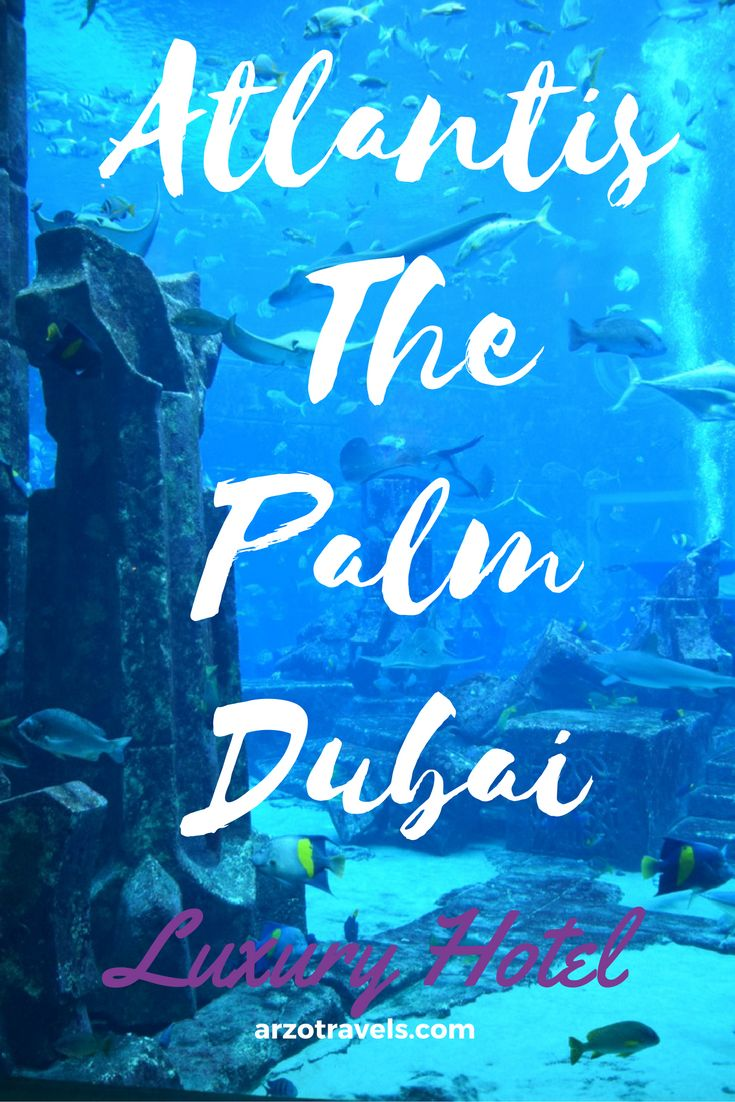 One of its kind. Find a full review of the famous Atlantis- The Palm hotel in Dubai, a luxury 5* property. Emirates