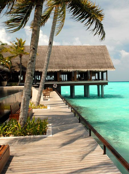 The Maldives ~ 'The Reethi Rah resort  offers five-star luxury ~ choose a water bungalow and sleep as if your floating above the turquoise ocean, or a private beach villa with your own infinity pool' // © Rex Features