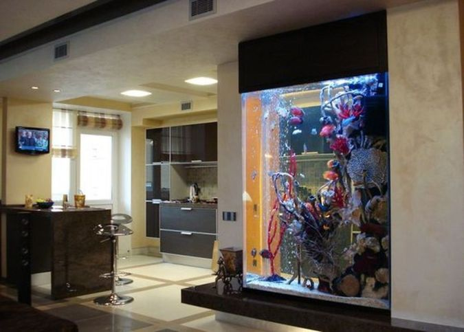 The 25 Best Aquarium Design Ideas On Pinterest Aquarium Ideas