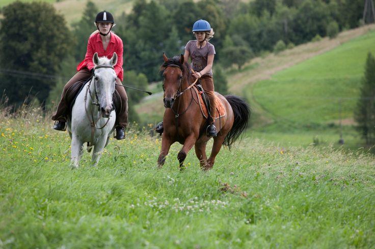 A może na początek dnia konna przejażdżka w plenerze? ;)   http://www.hotelklimek.pl/ #konie #jazdakonno #muszyna #hotelklimek