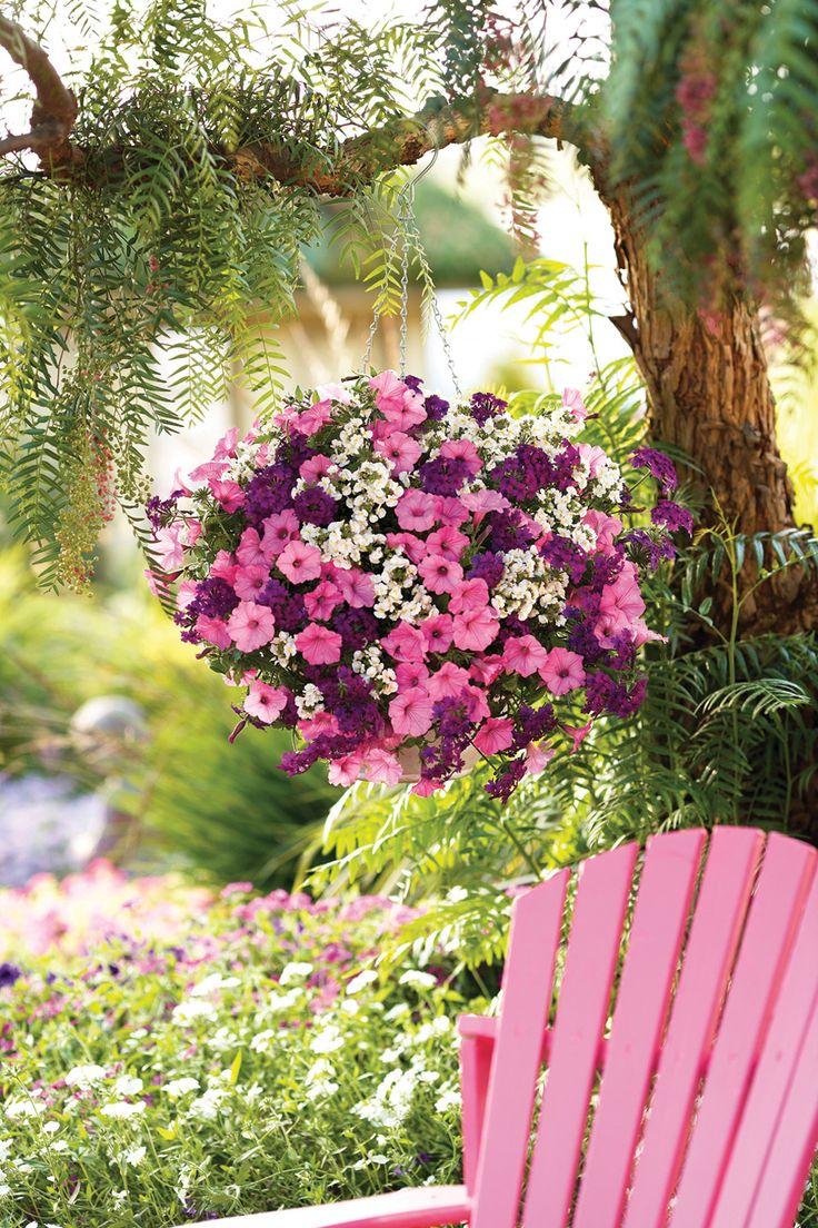 Best sarkan sepetler images on pinterest gardening