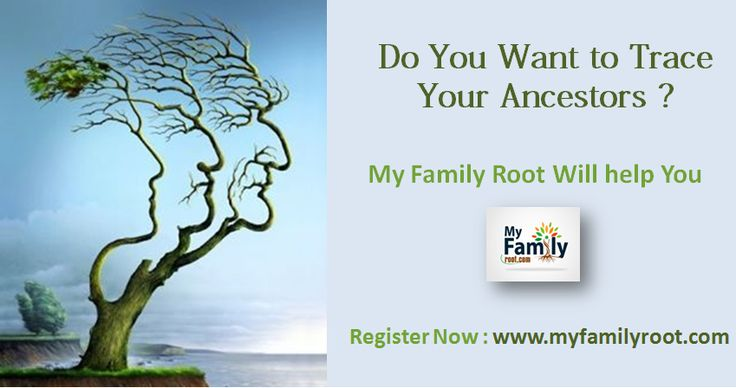 47 best Make Family Tree Online images on Pinterest Family tree