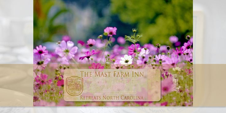 Availability & Pricing | http://www.mastfarminn-retreats.com/availability-pricing | Here you will find special flat rate group pricing enabling you to determine what your retreat at The Mast Farm Inn would cost, see availability information & guidelines, review general conditions and terms, as well as obtain an official quote.