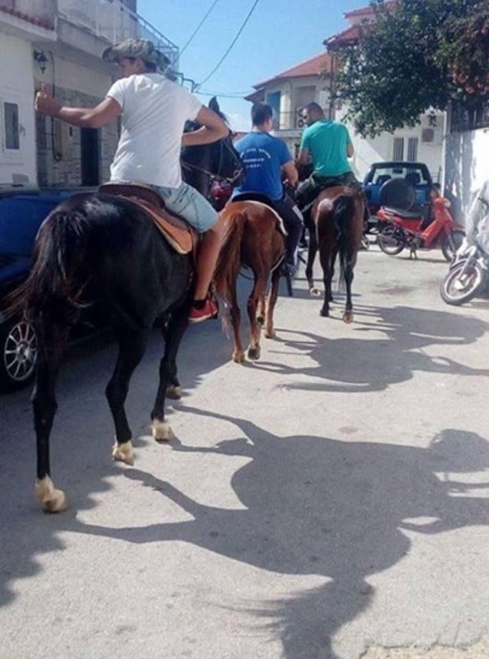 Αλιβέρι: Τα άλογα έκαναν μικρούς και μεγάλους να ''κολλήσουν''!