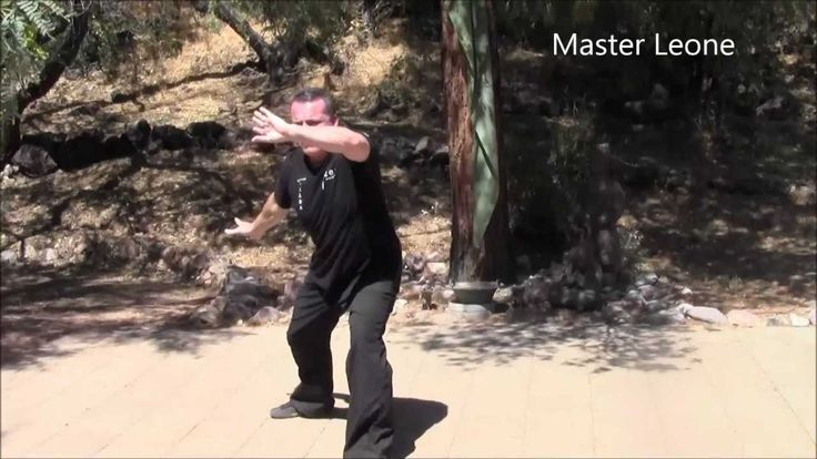 Zen Wellness Medical Qigong - Lesson 1 - Stimulate Your Chi