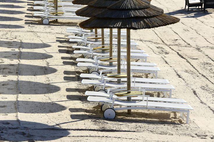 Beach #LePinarello