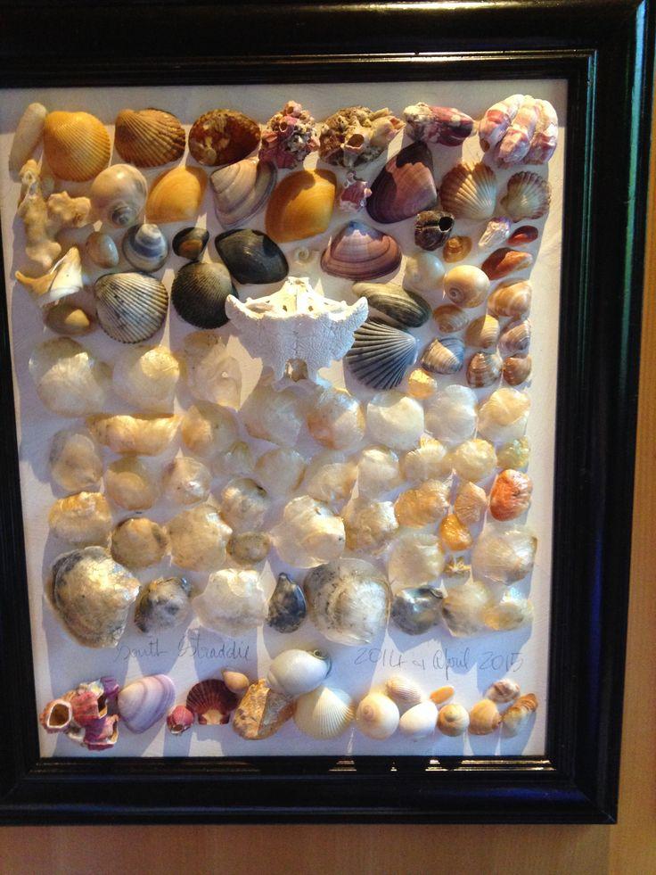 #shells #framed #marine #life #colours #beach #sand #artwork #craft #JanetBailey #handmade