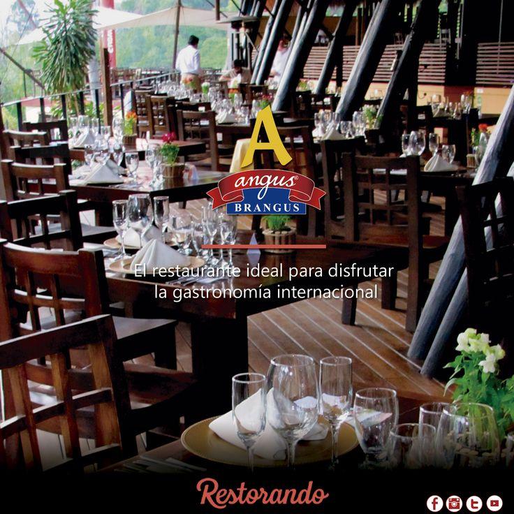 Reserva tu mesa en Angus Brangus Parrilla Bar   a través de RestorandoColombia   y disfruta hasta el 10% de descuento con pagos en efectivo .    Aplican condiciones y restricciones, verifica en nuestro sitio web.   Reservas: http://ow.ly/WEyzb . Cra. 42 # 34 - 15 / Km 1 Vía las Palmas.  #Medellin #RestaurantesMedellin #restorando #Gastronomía #reservatumesa #colombia #descuentos #dondecomermedellín #restaurantesrecomendados #medellintown #medellincity #medellineats #parrilla…