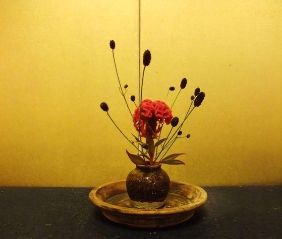 長月に入る : 一茎草花