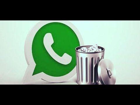 Cómo recuperar una conversación borrada del Whatsapp - YouTube