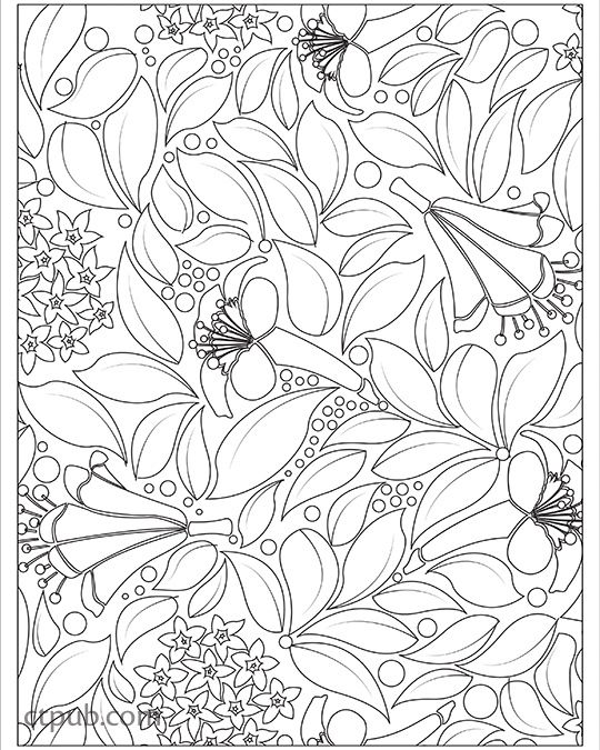 Playful Designs Coloring Book: 18 Fun Designs + See How Colors Play Together + Creative Ideas designs by Patty Young #PlayfulDesigns