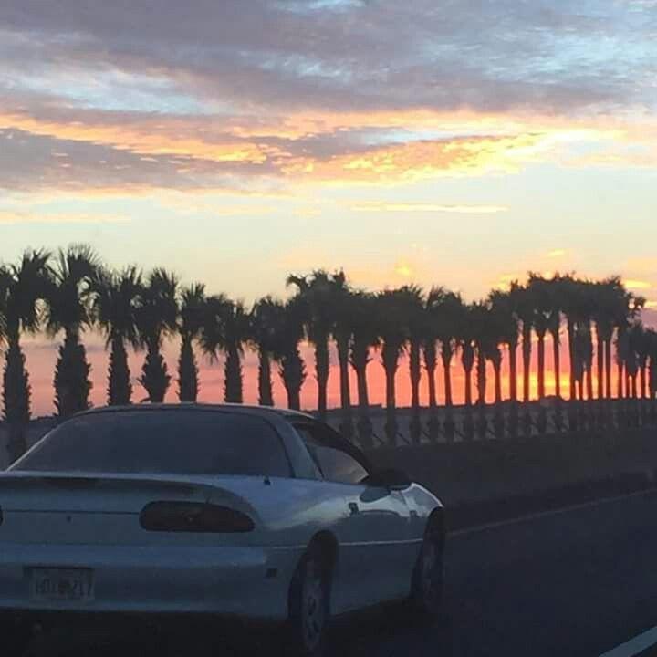 Florida traffic :)