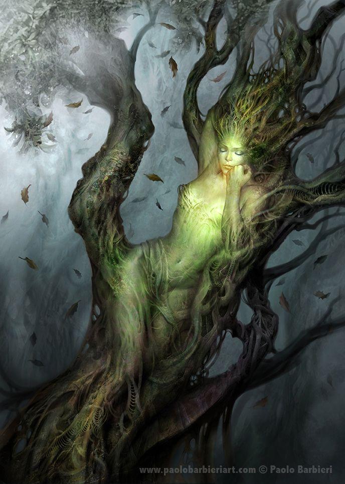 """""""Non ha finito la supplica che un torpore le attarda le membra, una corteccia leggera le fodera i teneri seni, i capelli mutano in foglie, le braccia in rami; i piedi, velocissimi un attimo fa, si piantano in pigre radici; il viso è il ciuffo di un albero; non le resta che un vago splendore."""" (Le Metamorfosi)"""