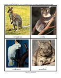 Australian Animals matching games and activities for Preschool, PreK and Kindergarten