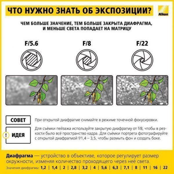 http://cs7054.vk.me/c540107/v540107747/2a2c3/gh5Jzx_PPmQ.jpg